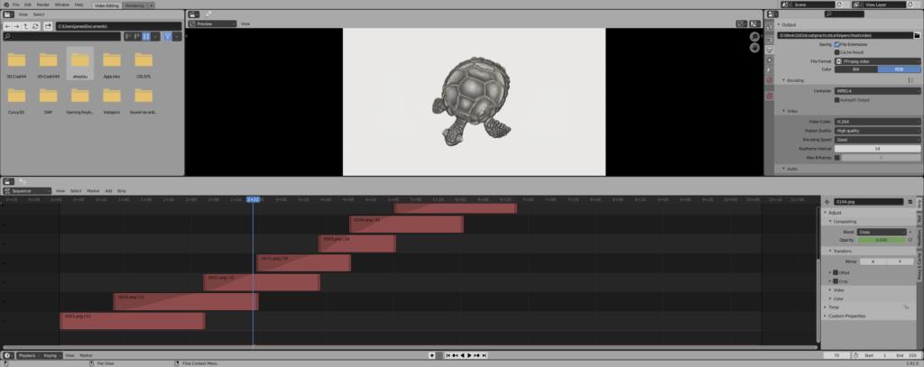 turtlevideotest