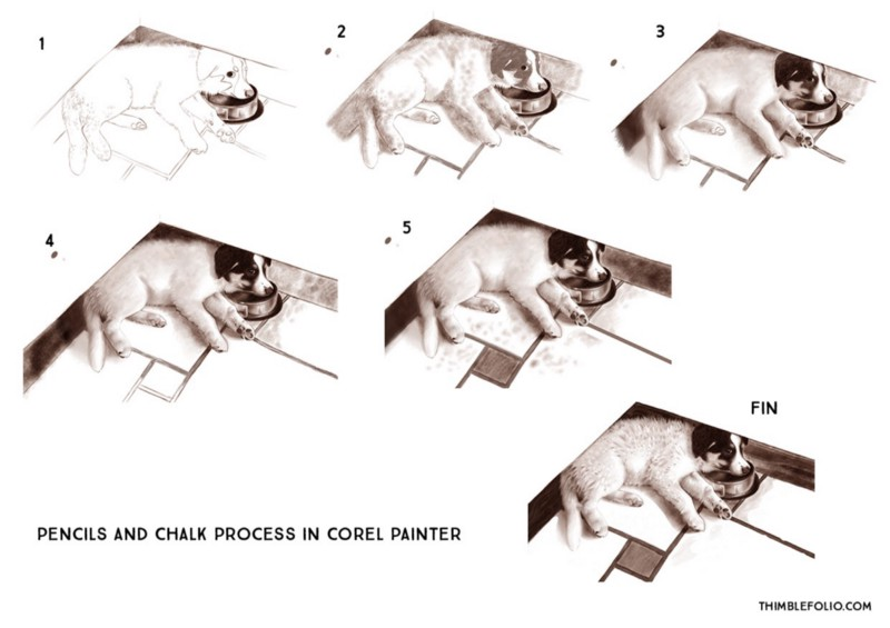 painterpencildoggystudy
