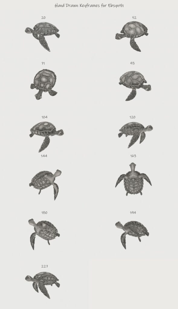 Hand Drawn Key Frames for the Turtle animation